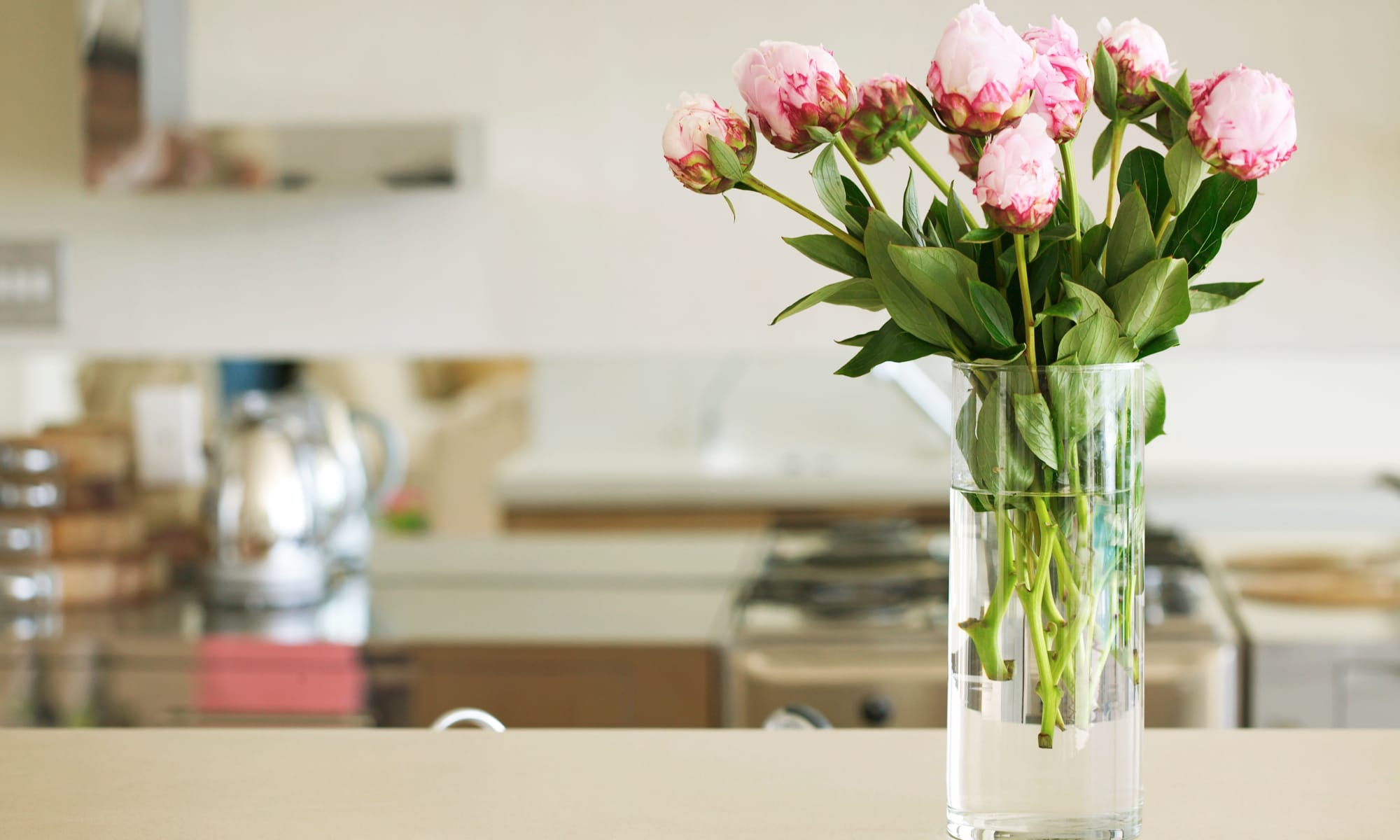 A kitchen with flowers om the counter top at Broadwell Senior Living in Kearney, Nebraska