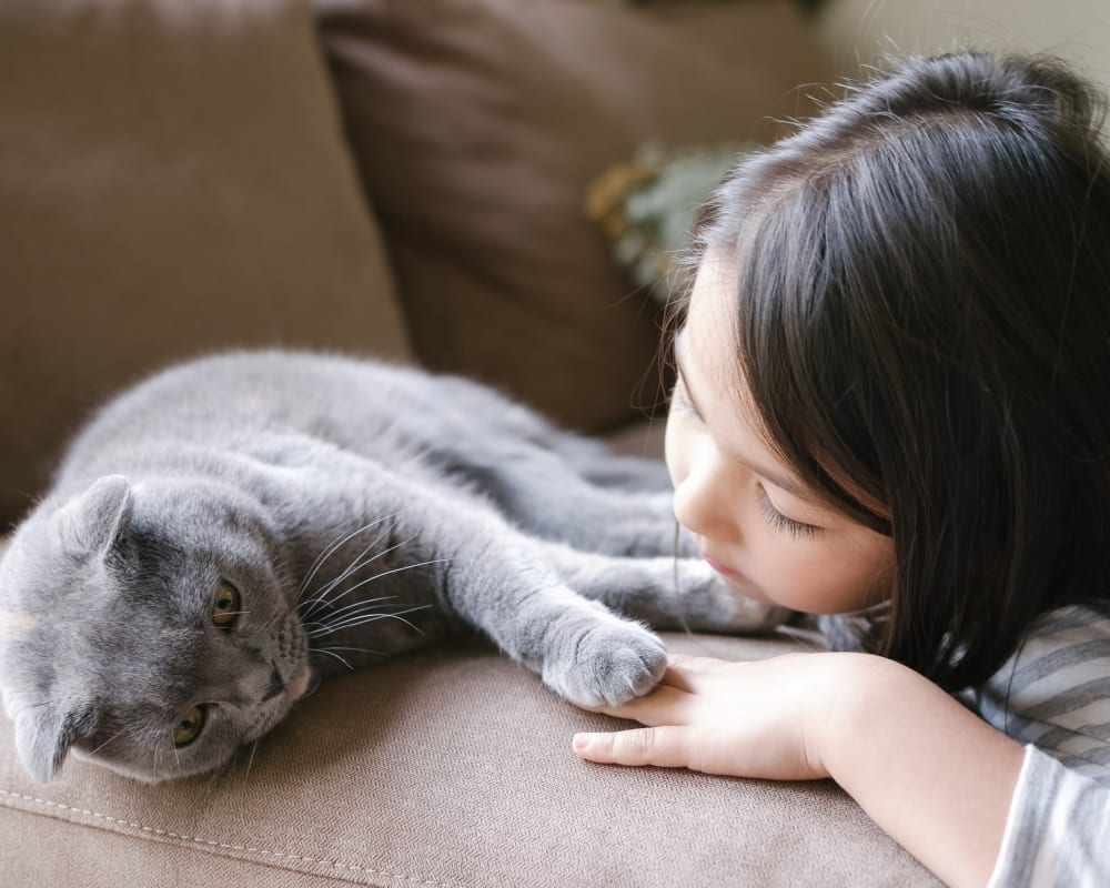 Child and her cat sitting on a couch at Oakwood Apartments in West Carrollton, Ohio