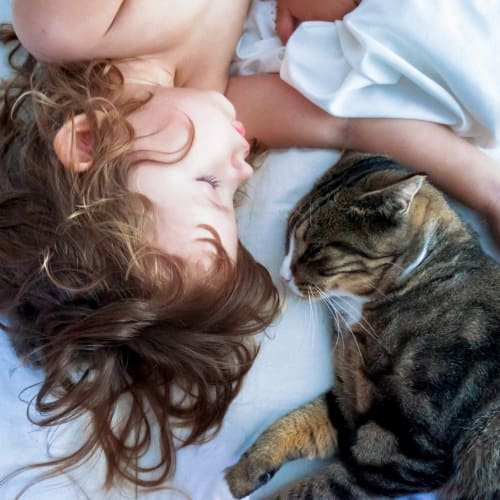 Child and her cat taking a nap in their new home at Vistara at SanTan Village in Gilbert, Arizona