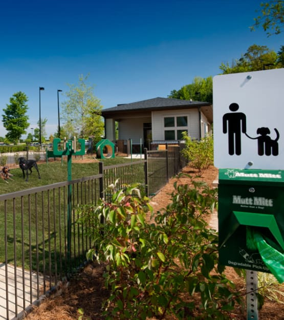 Onsite bark park at Celsius in Charlotte, North Carolina