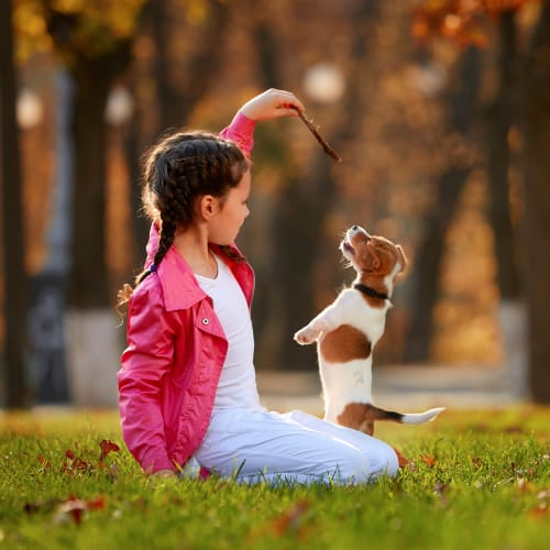 Resident child and her puppy playing outside at Tacara at Westover Hills in San Antonio, Texas