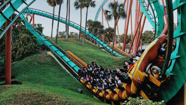 Roller coaster at Busch Gardens near Canopy at Citrus Park in Tampa, Florida