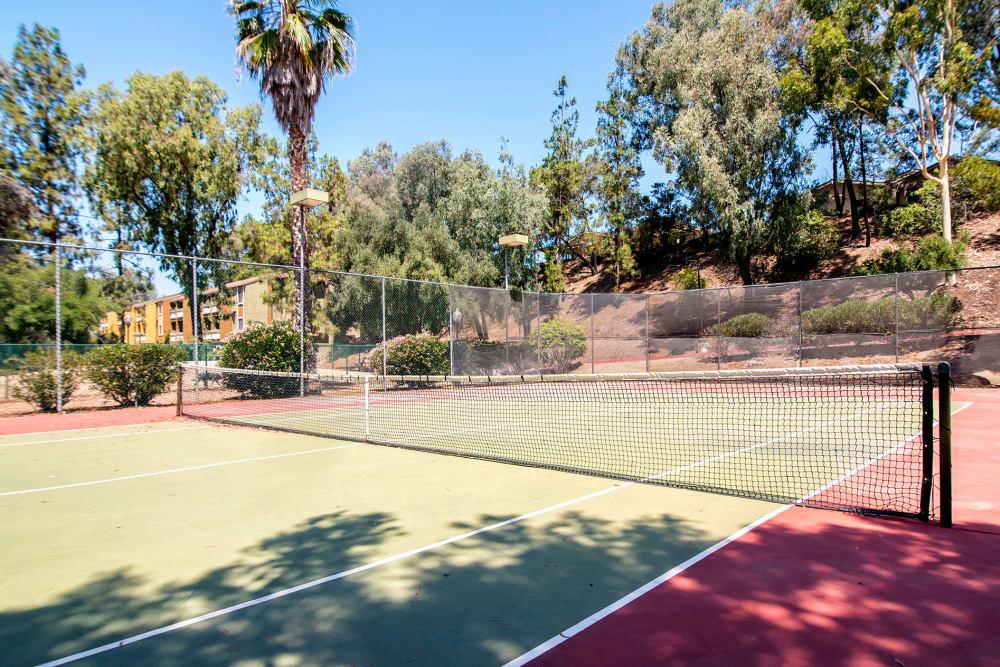 Tennis Court at Alvista on Baltimore