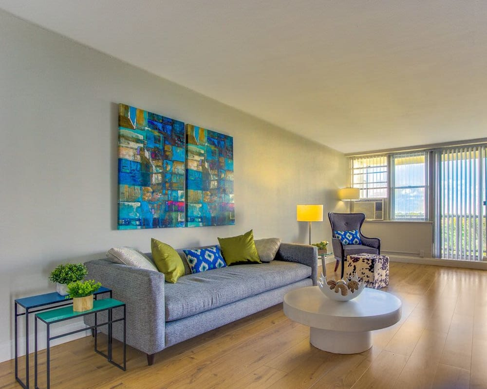 Light and bright living room at Chestnut Hill Tower in Philadelphia, Pennsylvania