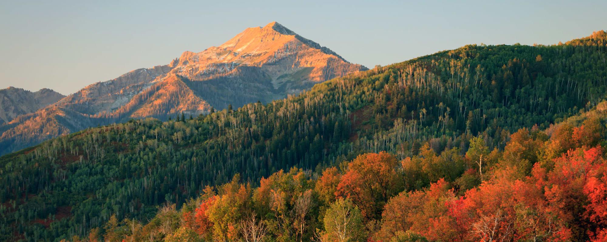 Careers at  Elk Meadows Assisted Living and Memory Care in Oakley, Utah