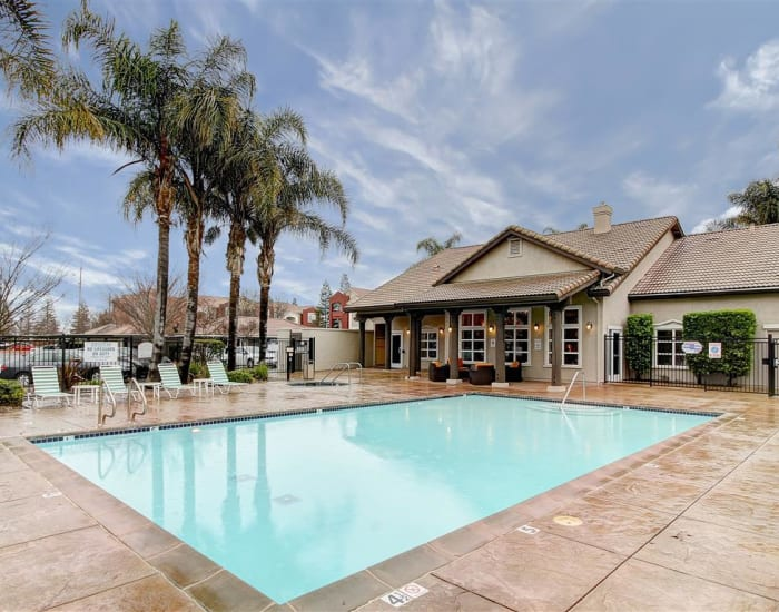 Swimming pool area with nearby palm trees at Eaglewood Apartments in Woodland, California