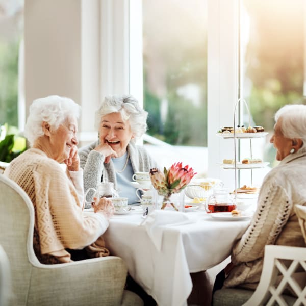 Resident friends dining at Chesapeake Place Senior Living in Chesapeake, Virginia.