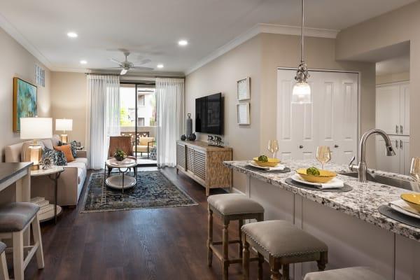Sleek, modern living room and kitchen at San Artes in Scottsdale, Arizona