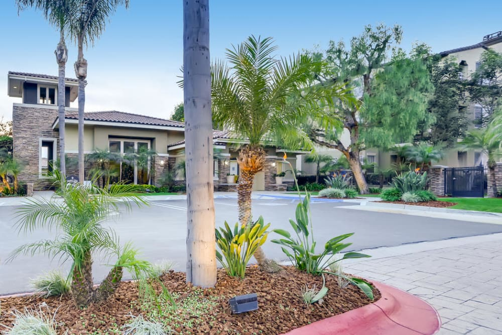 Beautifully manicured front entrance to the clubhouse at Alize at Aliso Viejo Apartment Homes in Aliso Viejo, California
