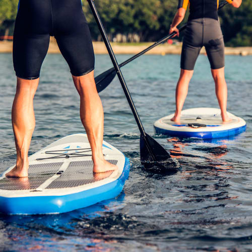 Paddle boarders in Land O' Lakes, Florida