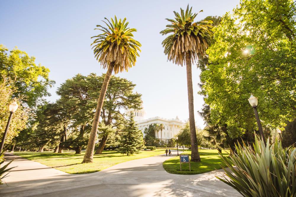 Lush property near Ray Stone Inc. in Sacramento, California