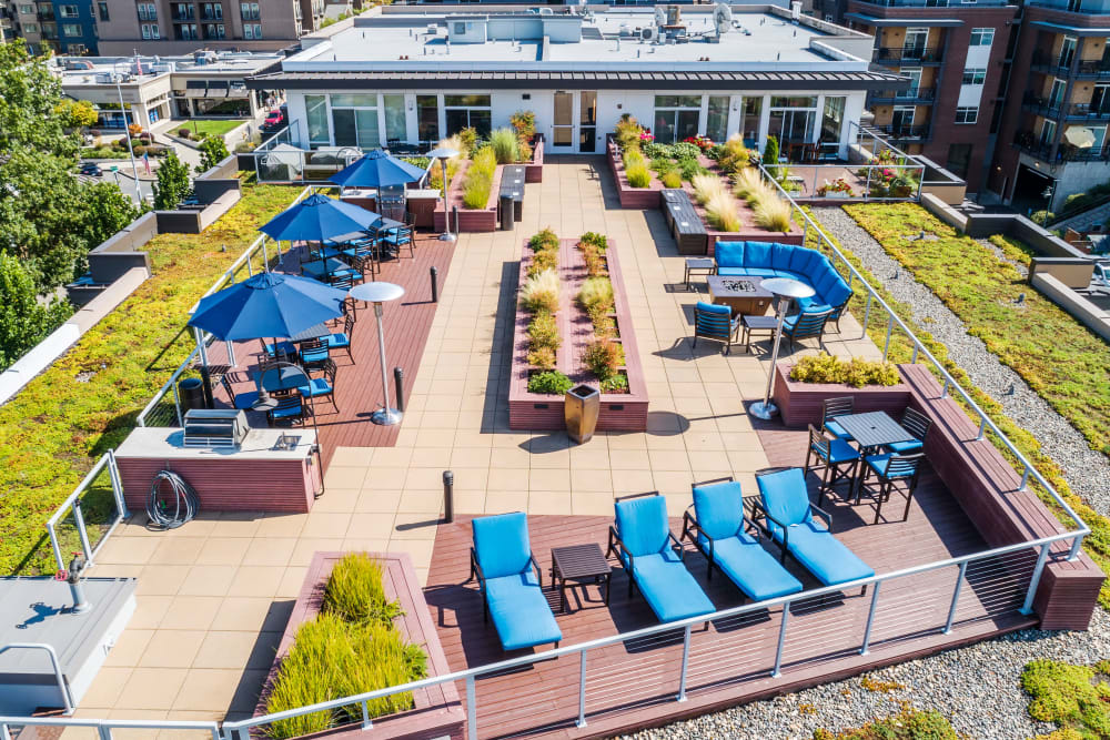 Aerial View of our beautiful outdoor lounge at The 101 in Kirkland, WA
