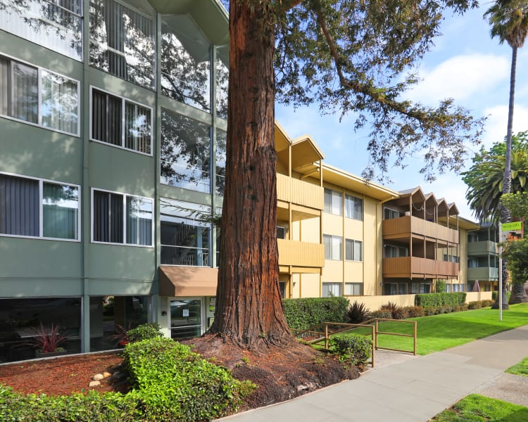 Beautifully maintained landscaping outside resident buildings at Sofi Redwood Park in Redwood City, California