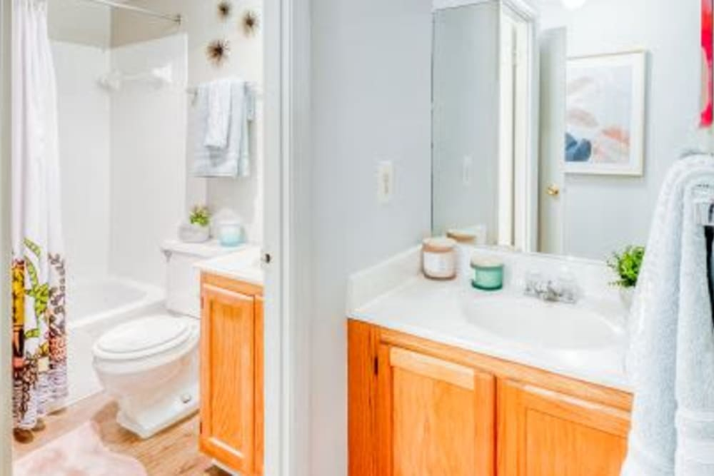 Bathroom at The Timbers at Long Reach Apartments in Columbia , Maryland