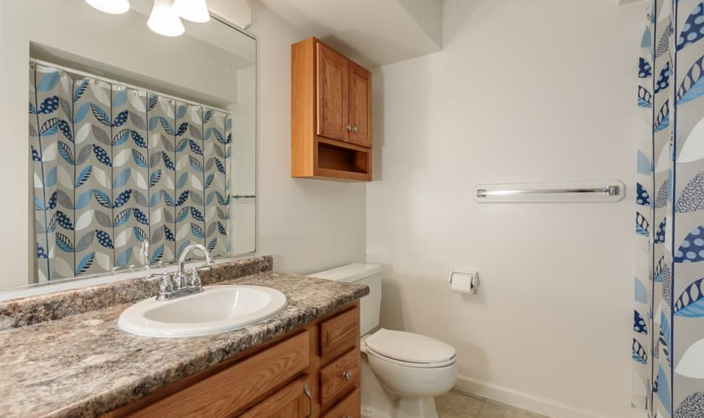 Bathroom at Steeplechase Apartments in Camillus, New York