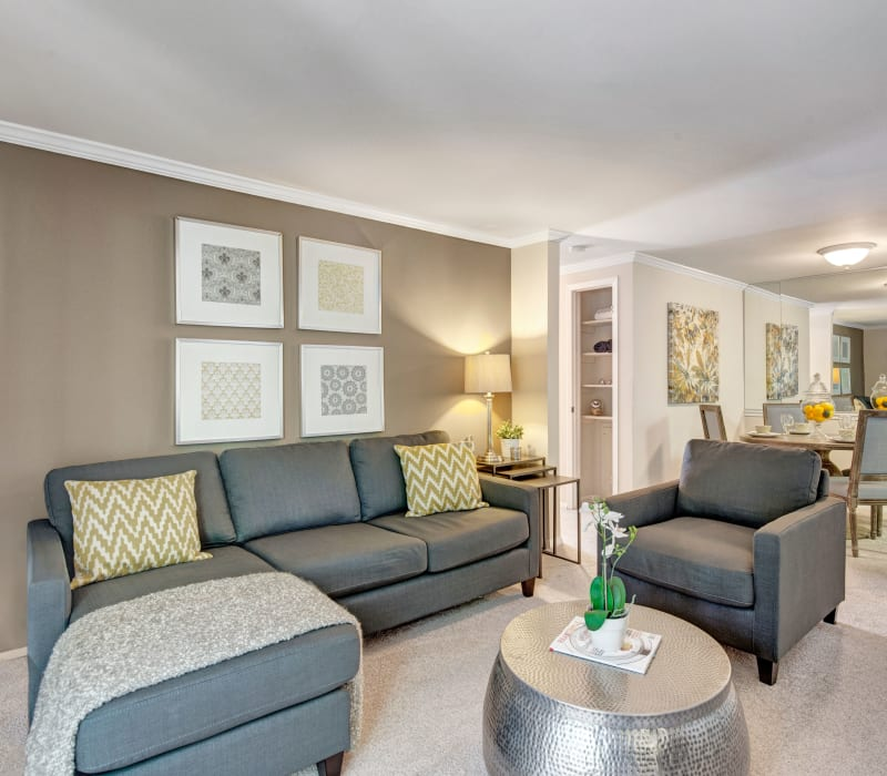Well-furnished living room area at The Hamptons at Town Center in Germantown, Maryland