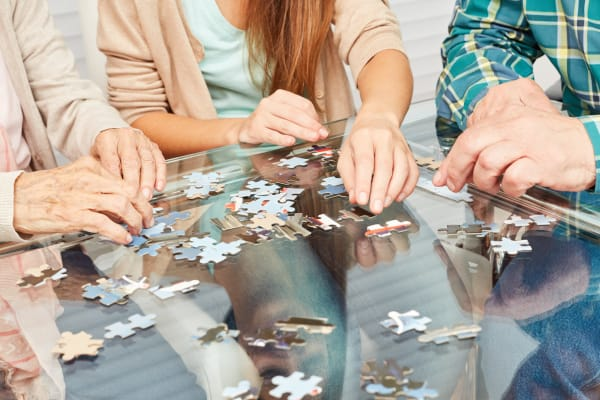 puzzles and other memory care activites in rittenhouse village portage indiana