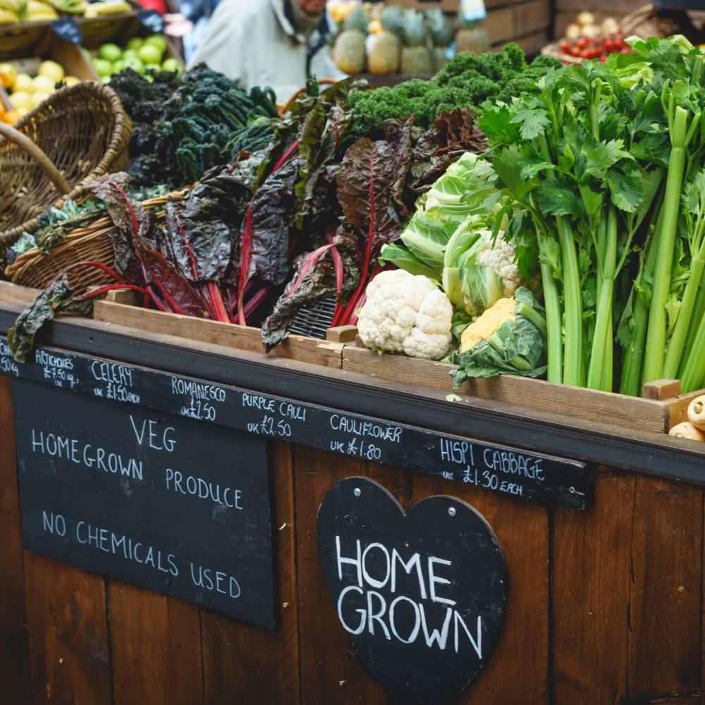 Local produce market near 300 Optimist Park in Charlotte, North Carolina
