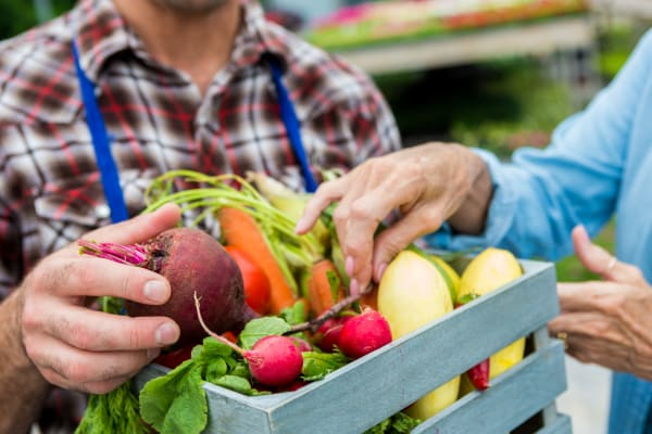Resident shopping for produce near Palo Alto Plaza in Mountain View, California