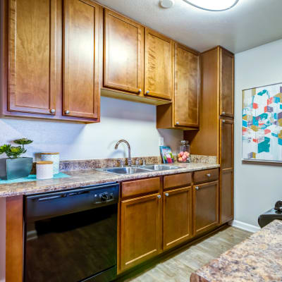 Modern kitchen with sleek black appliances and rich wood cabinetry in a model home at Sofi Poway in Poway, California