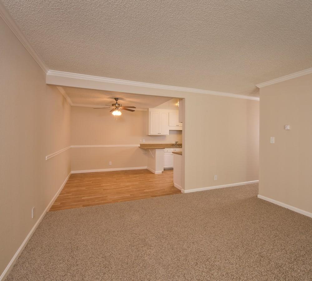 Spacious living room with plush carpeting at Flora Condominium Rentals in Walnut Creek, California