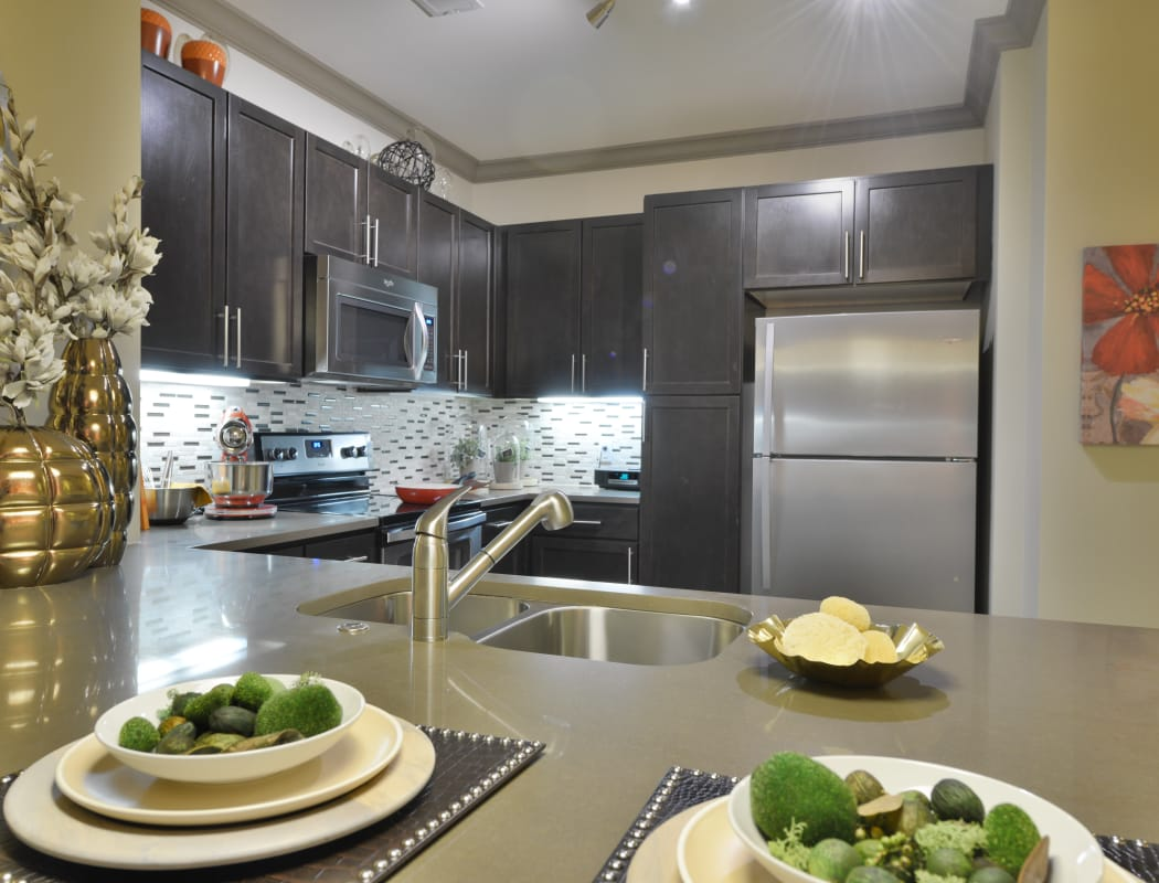 Modern kitchen at Emory Point