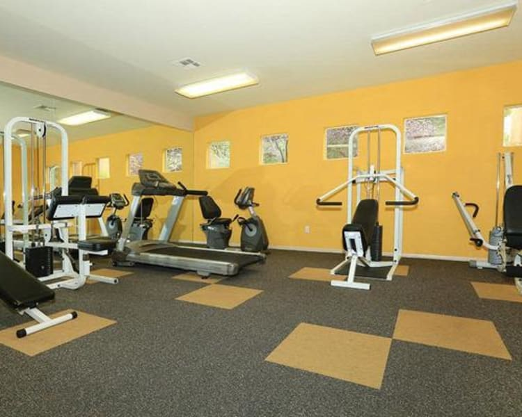 Well-equipped onsite fitness center at Alterra Apartments in Las Vegas, Nevada