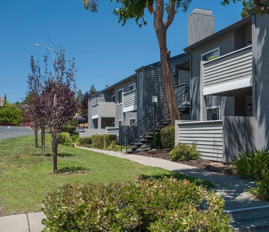 Plum Tree Apartments is a sister property near Park Central in Concord, California