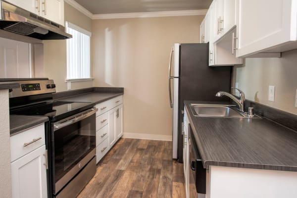 Luxury kitchen at Plum Tree Apartment Homes in Martinez, California