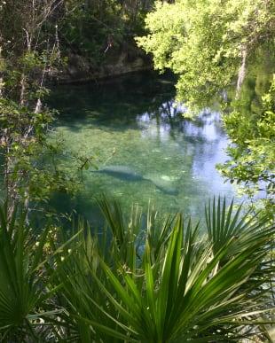 Attractions near Villa Grande on Saxon in Orange City, Florida