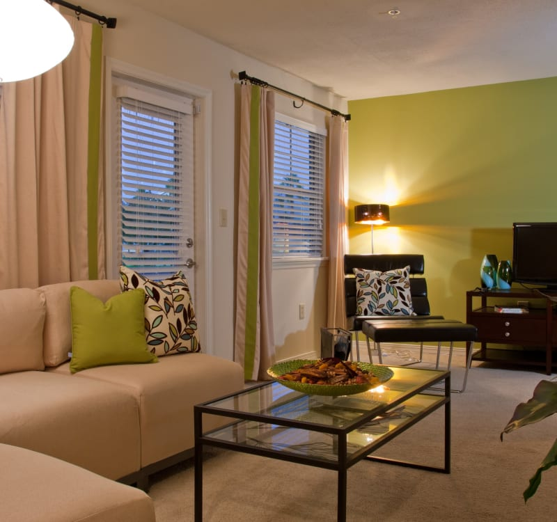 Accent wall and window treatments in a model home at Abaco Key in Orlando, Florida