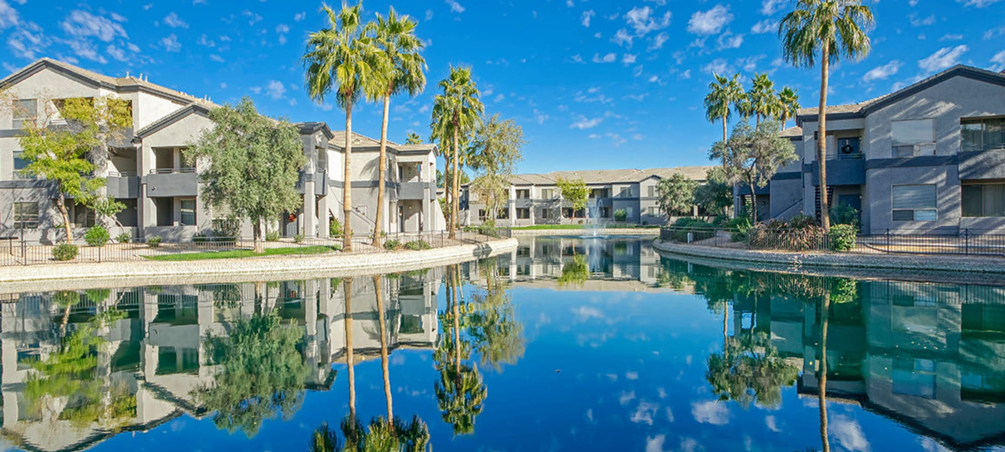 Resident homes with palm trees at Laguna at Arrowhead Ranch in Glendale, Arizona