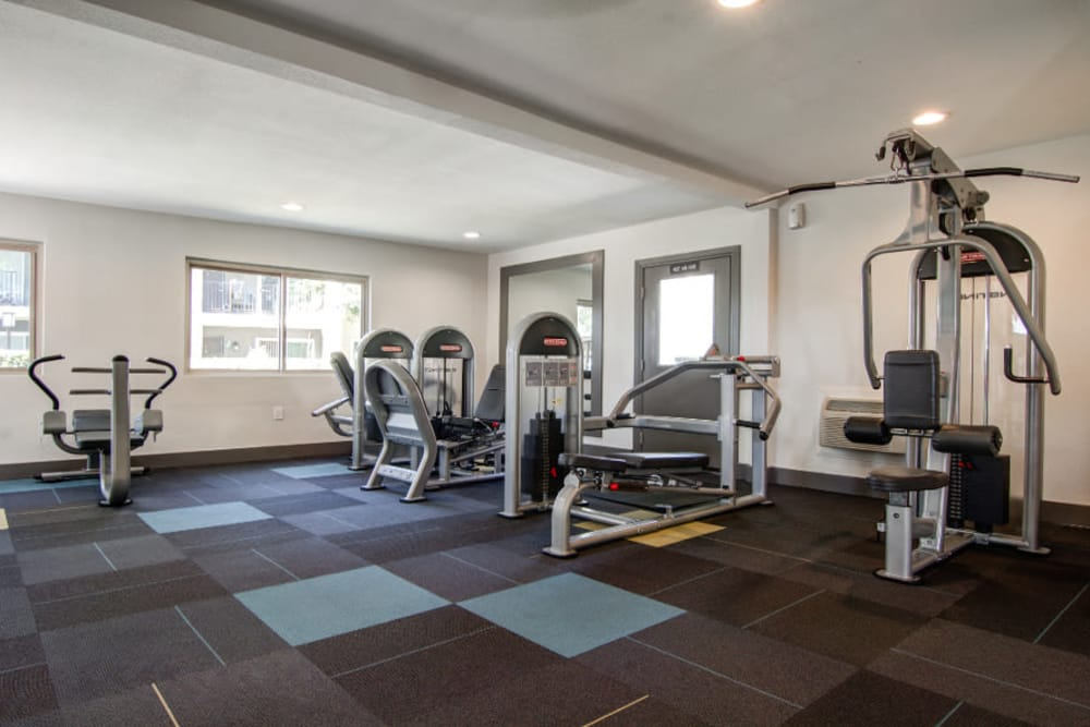 Relaxing fitness center at Sofi Poway in Poway
