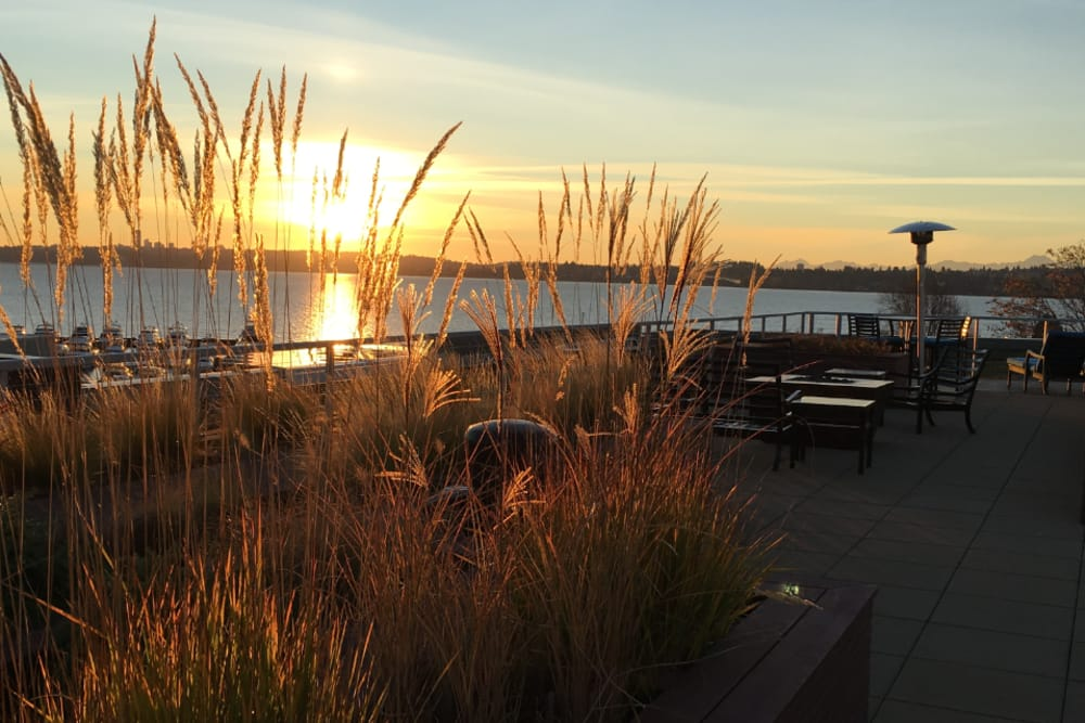 Outdoor Lounge at The 101 in Kirkland, Washington