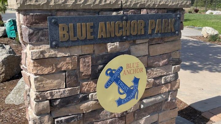 Blue Anchor Park Trails