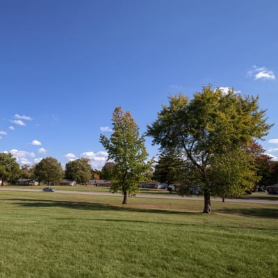 Large field outside of Steeplechase Village in Columbus, Ohio