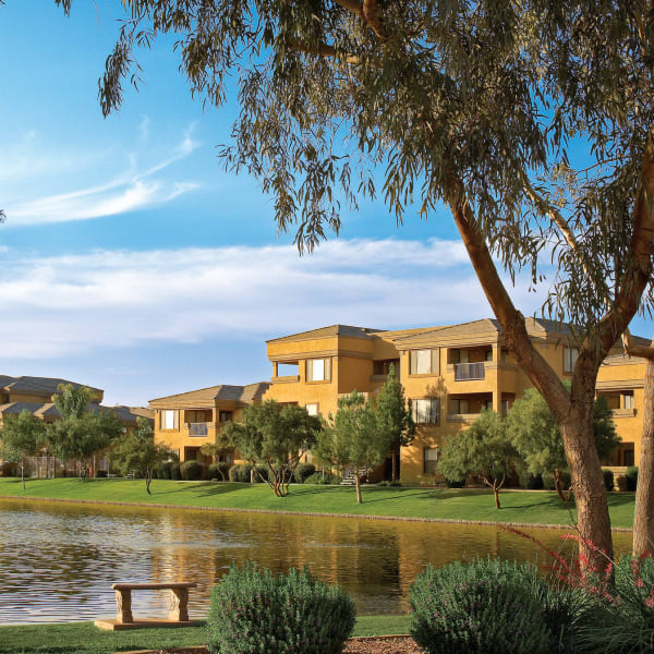 Stunning view from the edge of the lake at Waterside at Ocotillo in Chandler, Arizona