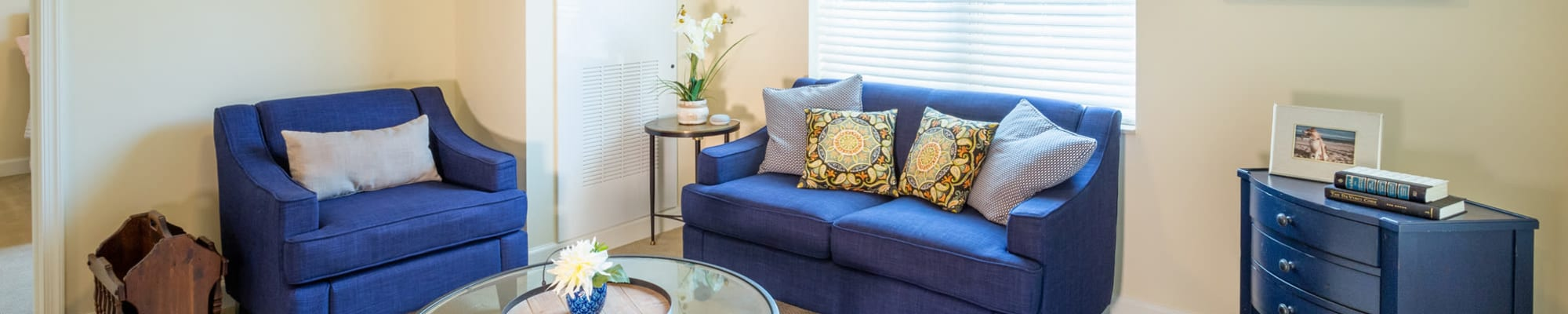 Gallery of The Harmony Collection at Roanoke - Assisted Living in Roanoke, Virginia