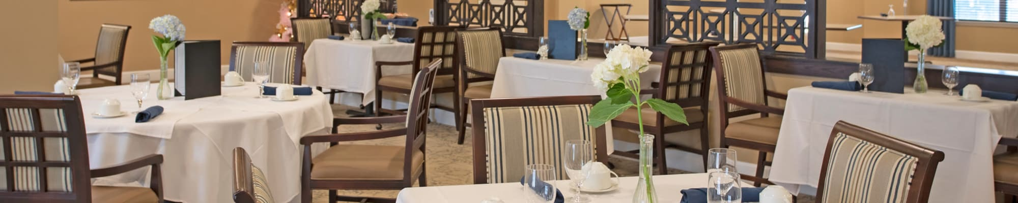 Reviews of The Harmony Collection at Columbia in Columbia, South Carolina