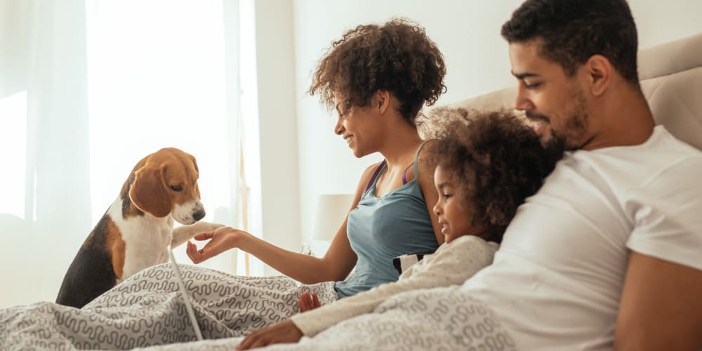 Family laying in bed with their dog at Valleyfield Apartments in Bridgeville, Pennsylvania
