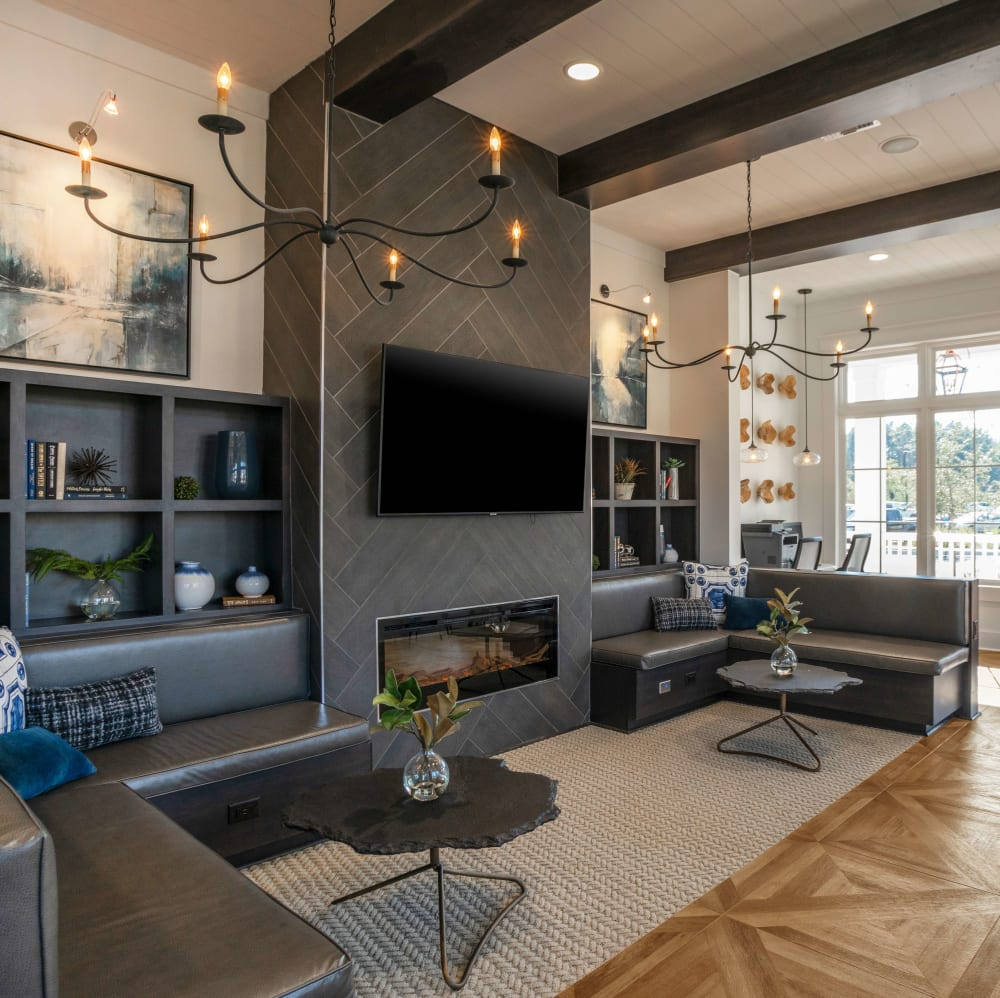 Resident lounge with comfortable seating and a flat-screen TV at Elevate at Brighton Park in Summerville, South Carolina