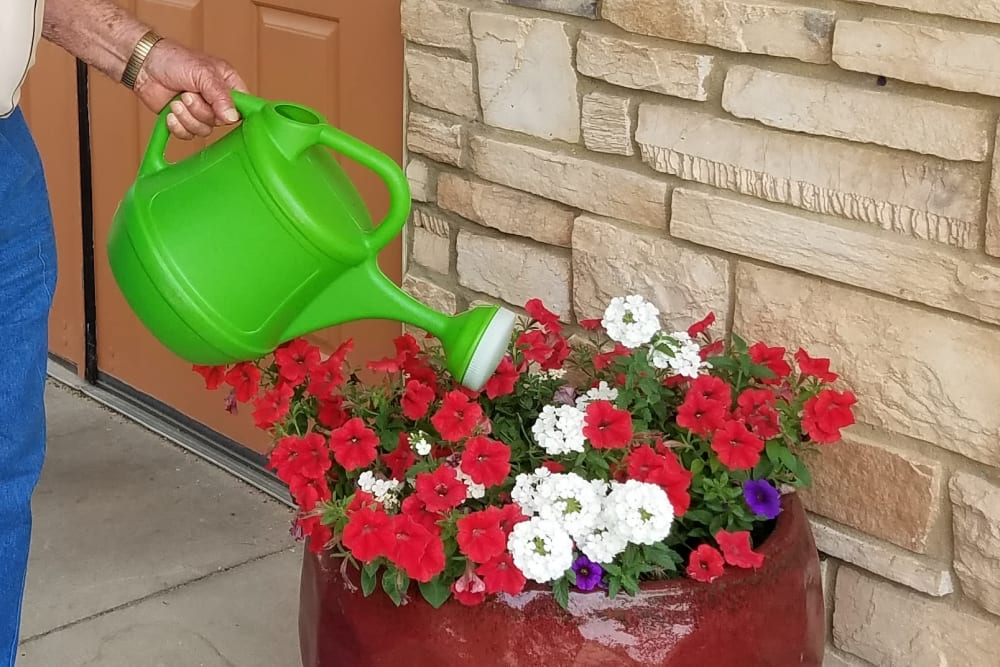 Resident watering plants and gardening at Prairie Hills Senior Living in Cedar Rapids, Iowa.