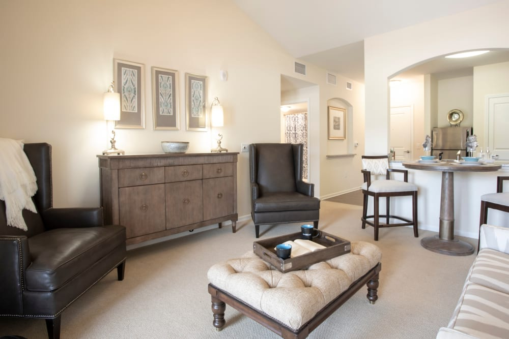 Living room at The Harmony Collection at Columbia in Columbia, South Carolina