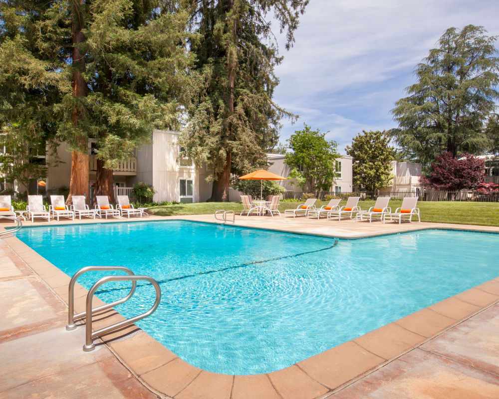 Sparkling swimming pool at Brookdale Apartments in San Jose, California
