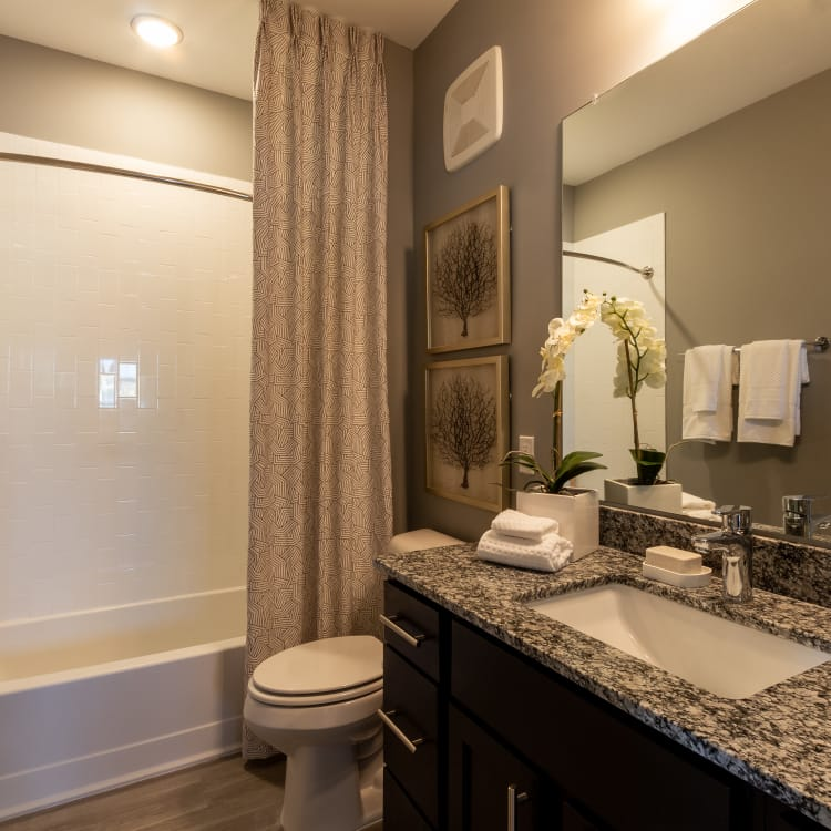 Alta Brighton Park offers a beautiful bathroom in Summerville, South Carolina