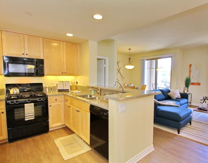 Modern kitchen with granite countertops and black appliances in model home at IMT Magnolia in Sherman Oaks, CA