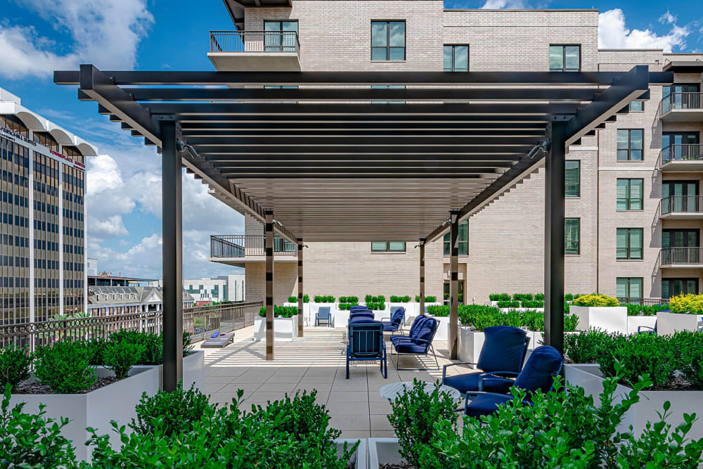 Lounge by the Pool at Canal1535 in New Orleans, Louisiana.