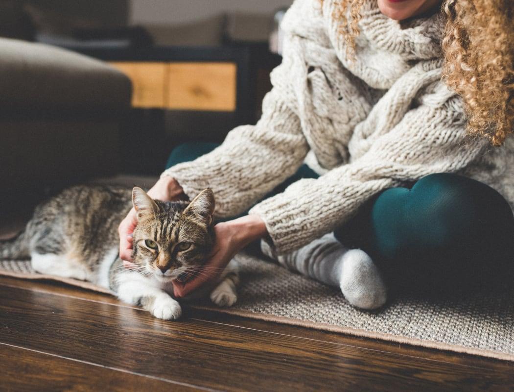 Resident petting their cat at Normandy Park Apartments in Santa Clara, California