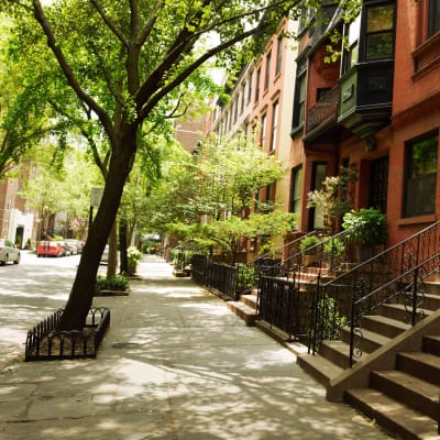 Gorgeous canopy covered sidewalks at 210-220 E. 22nd Street in New York, New York