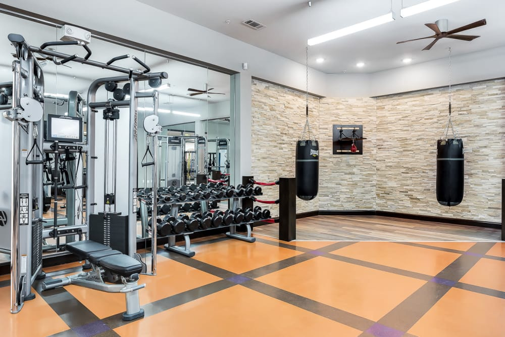 Fully equipped fitness center at Villas at the Rim in San Antonio, Texas